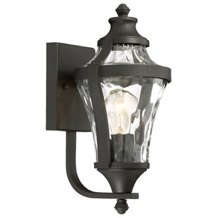 Best Curcio 1-Light Outdoor Wall Lantern By Darby Home Co