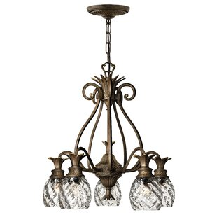 Beachcrest Home Terry 5-Light Shaded Chandelier
