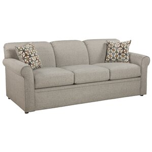 Cooldreamzzz Sleeper Sofa by Overnight Sofa