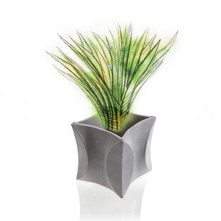 Dowdle Concrete Plant Pot Image