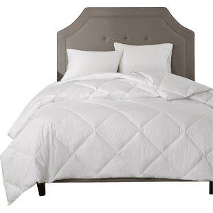 Madison Park Signature Comforter