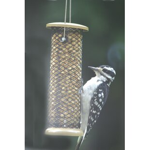 Birds Choice Low Cost Peanut Tube Bird Feeder