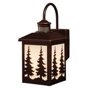 Loon Peak Jennings 1-Light Outdoor Wall Lantern