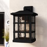 "Cayman 17"" H Outdoor Wall Lantern"