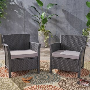 Rummond Outdoor Wicker Patio Chair with Cushions (Set of 2)