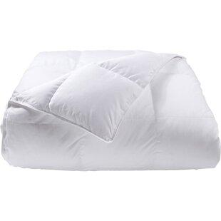 Loure Lightweight Down Alternative Comforter