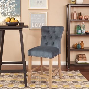 Danna 24 Bar Stool With Cushion (Set of 2) One Allium Way