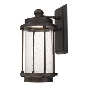 Where buy  Sturtz 2-Light Outdoor Wall Lantern By Brayden Studio