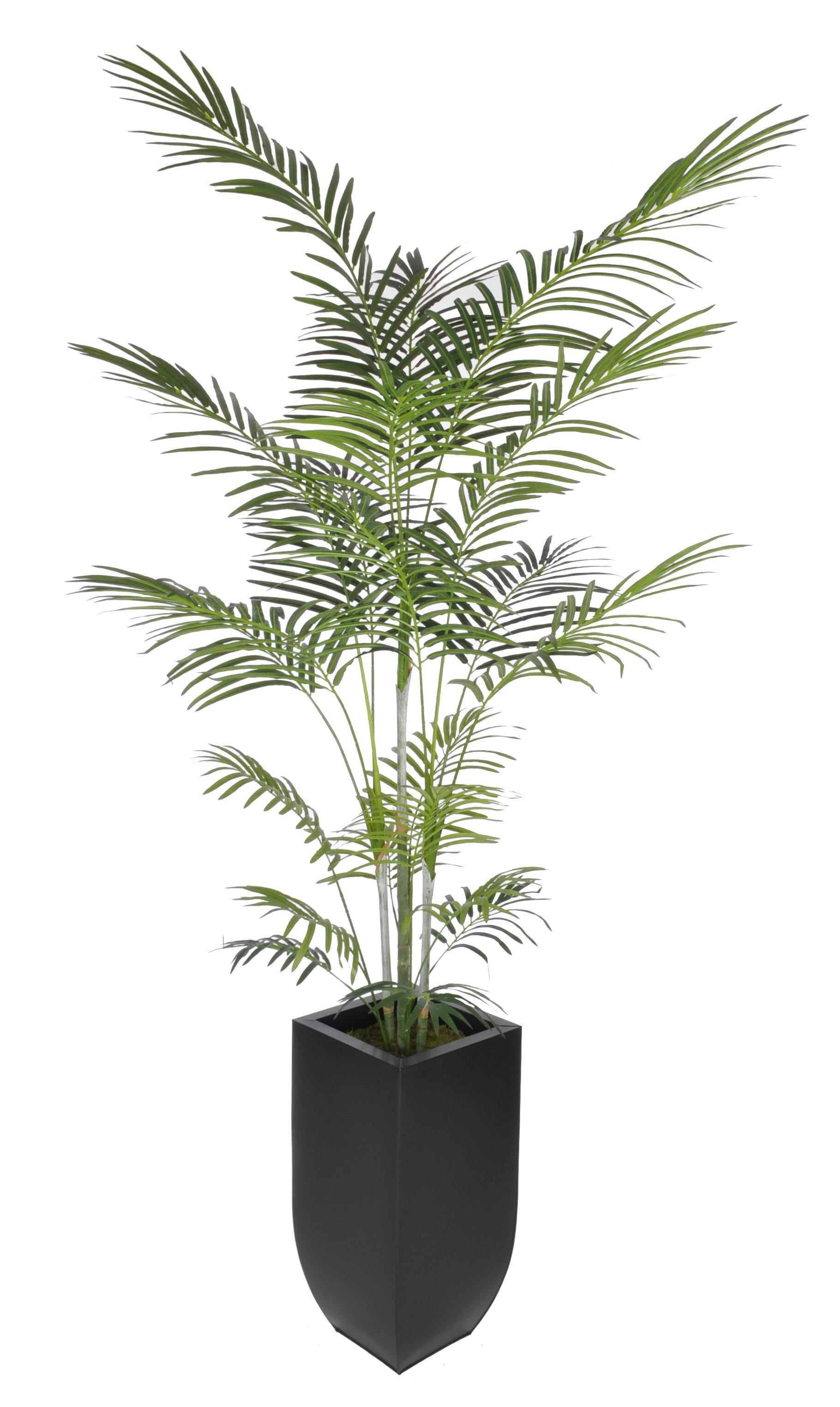 Beachcrest Home Artificial Areca Palm Tree Floor Plant In Planter