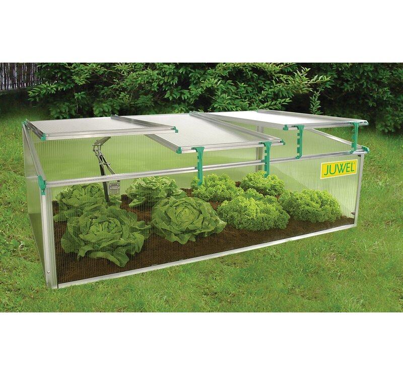 Juwel Biostar 2 6 Ft W X 4 92 Ft D Cold Frame Greenhouse Wayfair