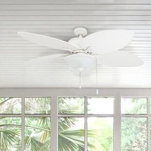 Find 52 Alexander Outdoor 5 Blade Outdoor LED Ceiling Fan By Bay Isle Home