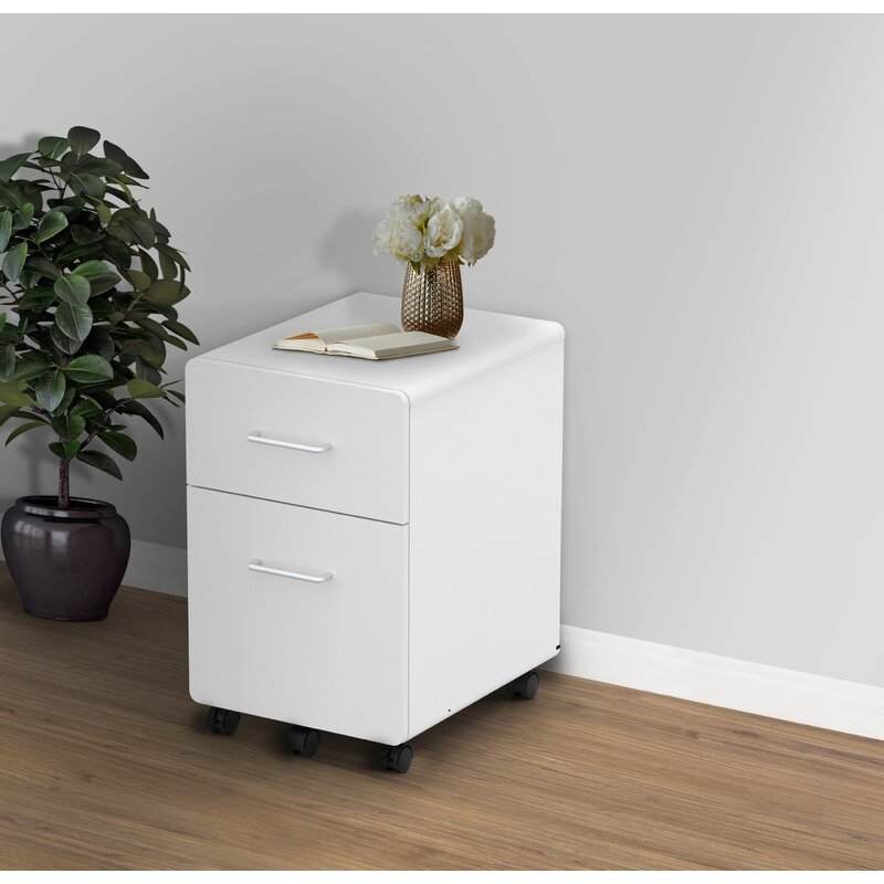 Latitude Run 2 Drawer Mobile Vertical Filing Cabinet Reviews Wayfair