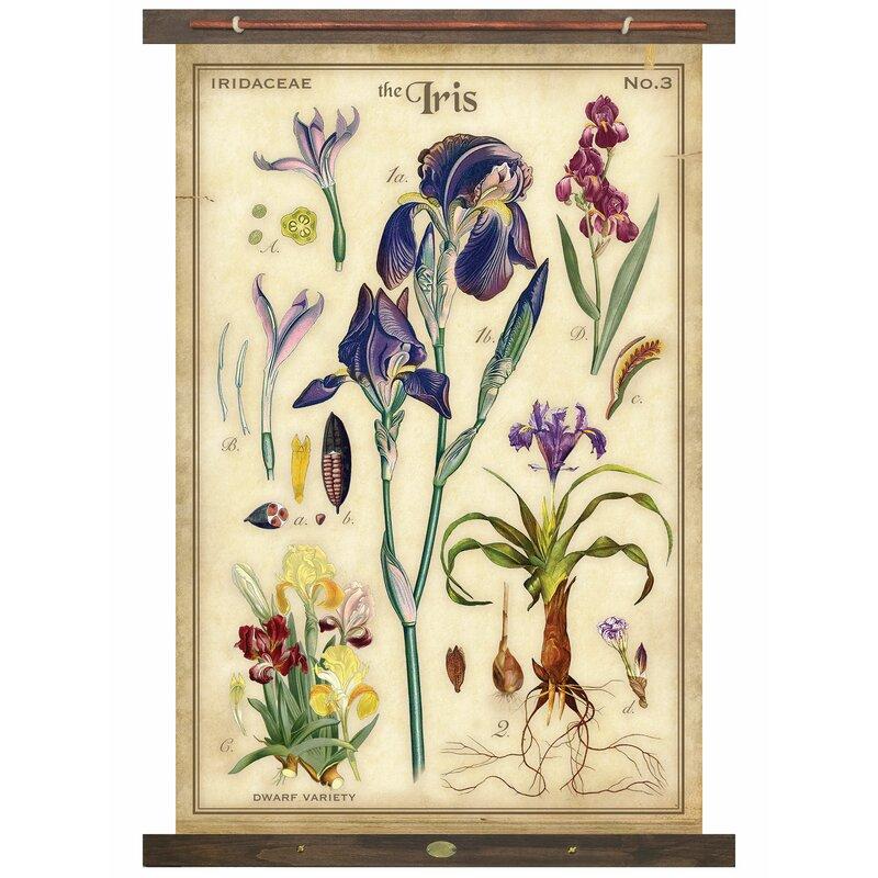 Charlton Home Iris Tapestry Wayfair