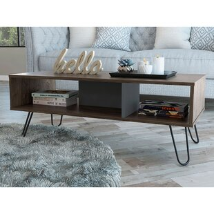 Mylah Coffee Table With Storage By Union Rustic