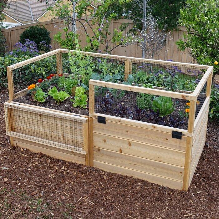 6 ft x 3 ft Cedar Raised Garden Bed Raised Planter Box Along Fence Backyard Ideas Las Vegas on