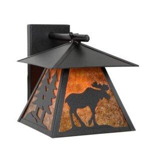 Reviews Moose Cascade 1-Light Outdoor Wall Lantern By Steel Partners