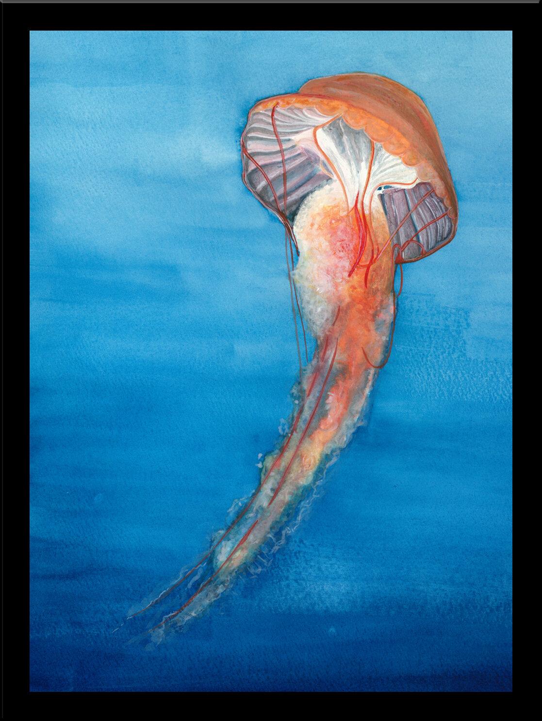 Highland Dunes Jellyfish Framed Oil Painting Print Wayfair