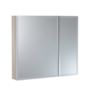 30 x 26 Recessed or Surface Mount Frameless Medicine Cabinet with 2 Adjustable Shelves by Hazelwood Home