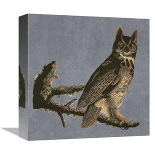 Audubon Decor U0027Horned Owl Detailu0027 Print On Canvas