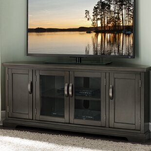 Reviews Hafner TV Stand for TVs up to 60 by Bungalow Rose Reviews (2019) & Buyer's Guide