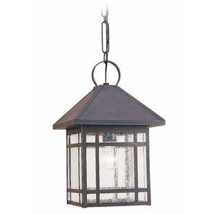 Bloomsbury Market Noble 1-Light Outdoor Hanging Lantern