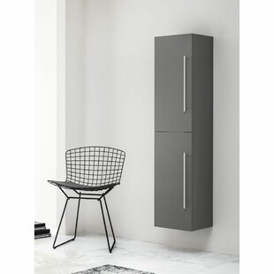 Stephen 35 X 160cm Wall Mounted Cabinet By Belfry Bathroom