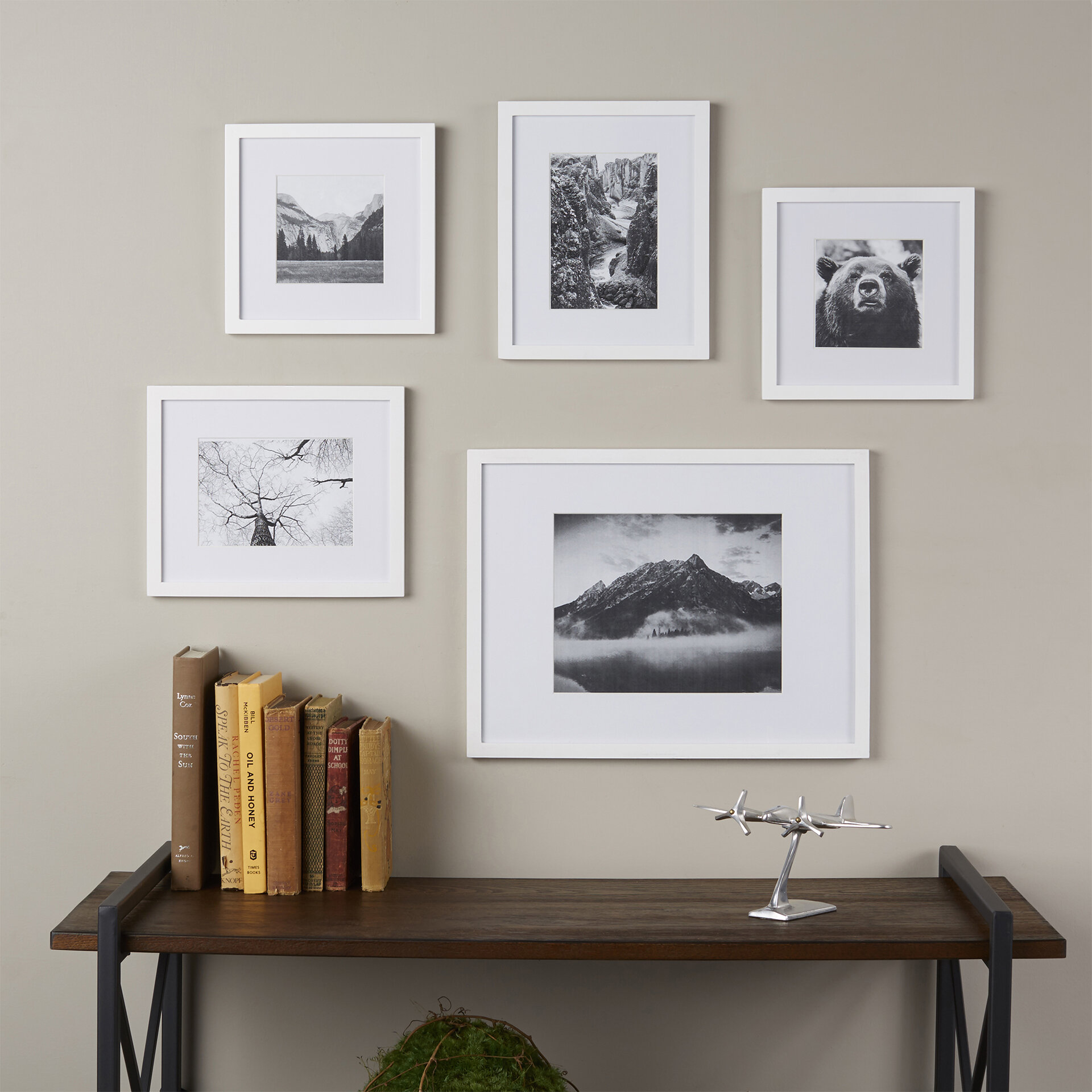 Wayfair Basics™ Wayfair Basics 5 Piece Picture Frame Set & Reviews ...