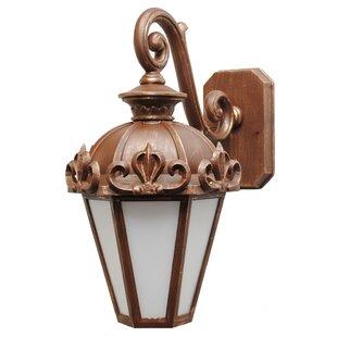 Alcott Hill Petrey 1-Light Outdoor Wall Lantern