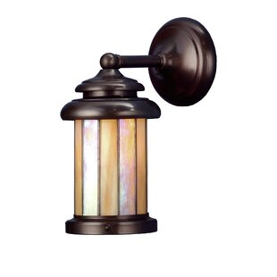 Comparison 1-Light Outdoor Wall Lantern By Meyda Tiffany