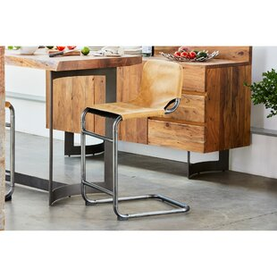 Alina Bar & Counter Stool (Set of 2)