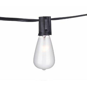 Frierson 24-Light 48 ft. Globe String Lights