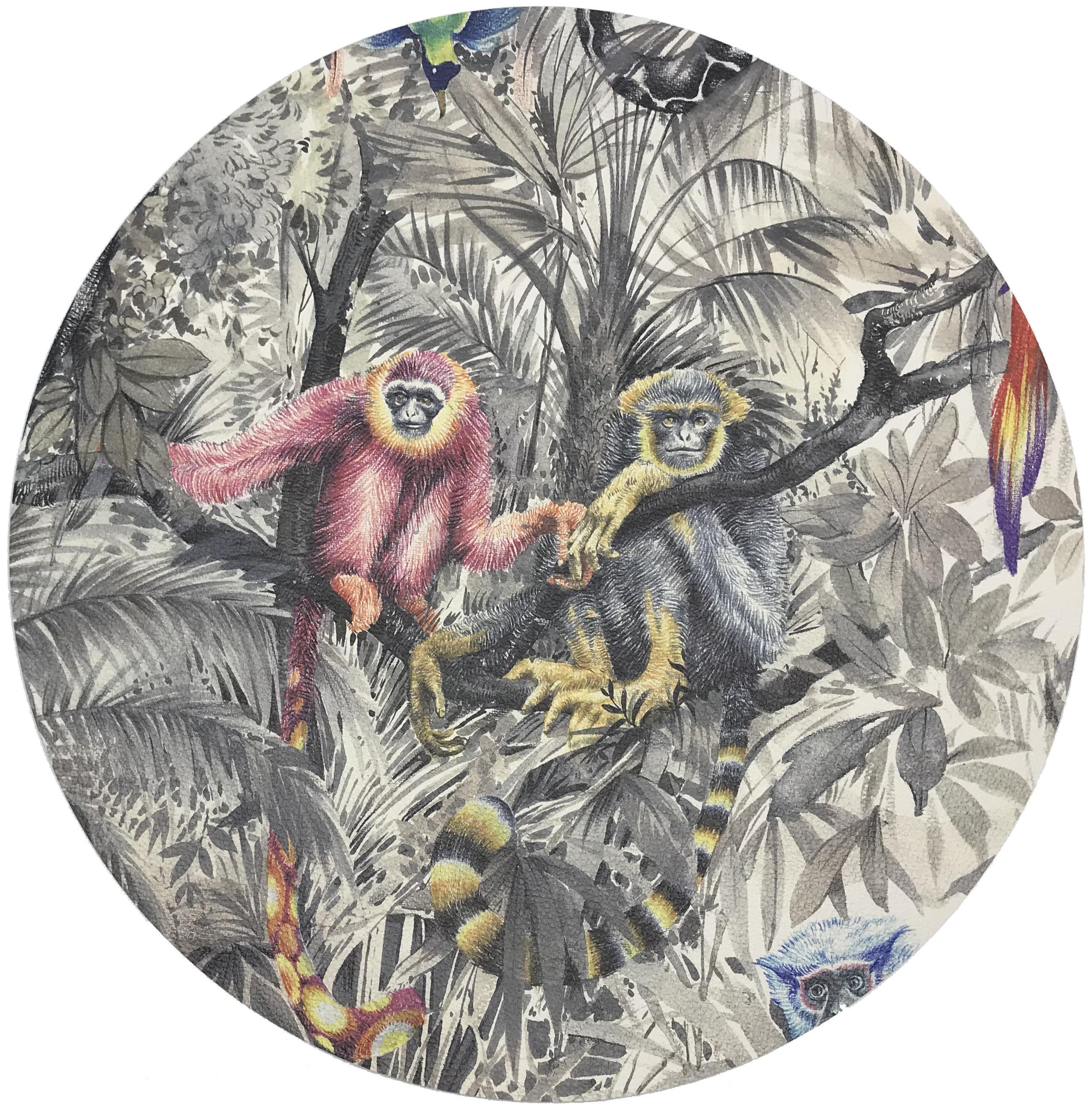 Nicolette Mayer Arcadia Monkeys Pebble 16 Vinyl Placemat Wayfair