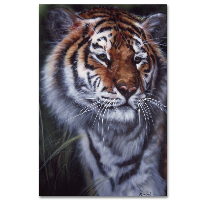 Trademark Art Tiger In The Midst Graphic Art Print On Wrapped Canvas Wayfair