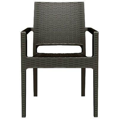 Brayden Studio Kesler Stacking Patio Dining Chair (Set of 2) Color: Brown