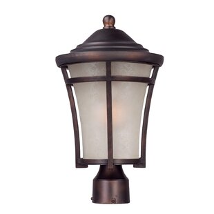 Darby Home Co Linsey Outdoor 1-Light Lantern Head