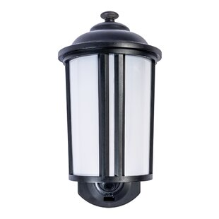 Read Reviews 1-Light Outdoor Wall Lantern By Jiawei Technology