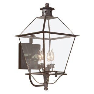 Best Price Theodore 4-Light Outdoor Sconce By Darby Home Co