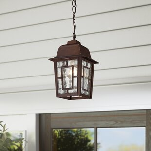 Outdoor Hanging Pendant Orb Light Wayfair