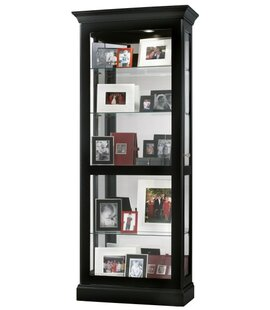 Brisson Lighted Curio Cabinet by Darby Home Co