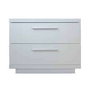 Online Reviews Ronan Lacquer 2 Drawer Nightstand by Orren Ellis