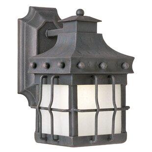 Loon Peak Roden LED Outdoor Wall Lantern