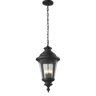 Lumley 4-Light Outdoor Hanging Lantern