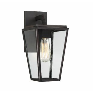 Gracie Oaks Wulff LED Outdoor Wall Lantern
