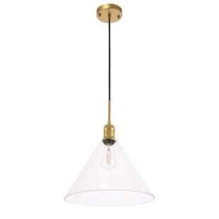 Vanita 1-Light Cone Pendant