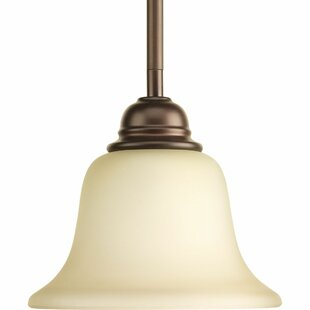 Ophelia & Co. Abdou 1-Light Cone Pendant