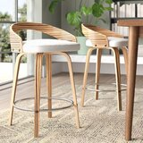 Wright Bar & Counter Swivel Stool (Set of 2) by Langley Street™