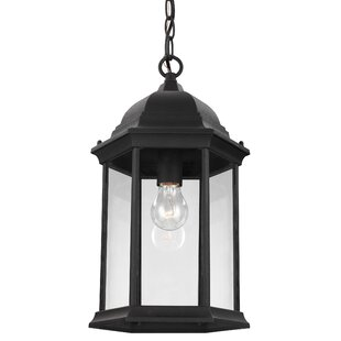 Alcott Hill Anka 1-Light Outdoor Pendant