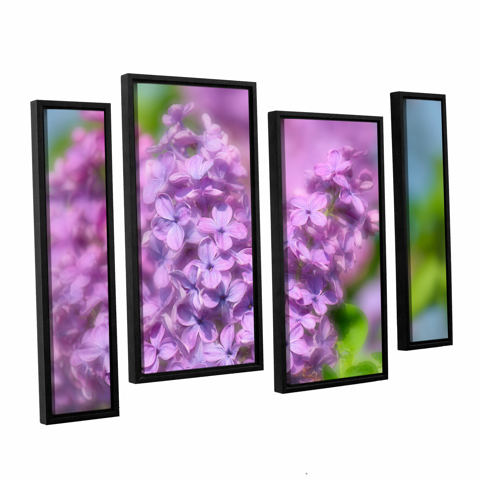 August Grove Lilac I 4 Piece Framed Photographic Print On Wrapped Canvas Set Wayfair