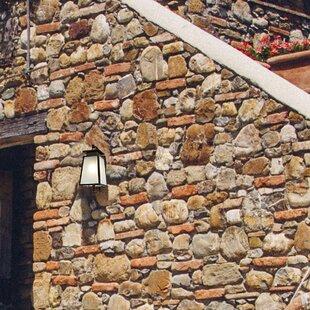 Acklin Outdoor Wall Lantern By Breakwater Bay