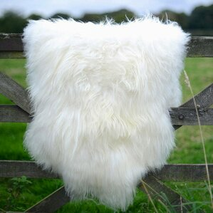Sheepskin Rugs Youll Love Wayfair